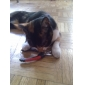 Cat Dog Grooming Nail Clipper Casual/Daily