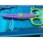 scrapbooking tijeras de encaje foto de DIY (rosa)