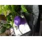 alto-falantes sem fio Bluetooth 2.1 CH Portátil / Exterior / A prova d'água / Mini