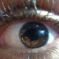범용 fisheye 광각 매크로 렌즈 범용 휴대 전화에 대 한 렌즈 아이폰 8 7에 대 한 samsung galaxy s8 s7