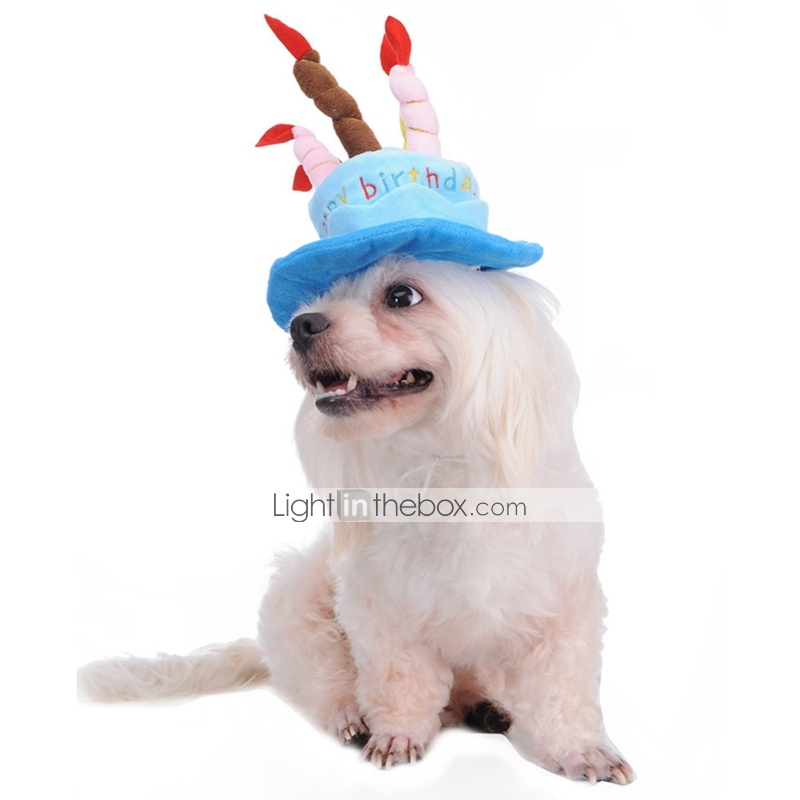 Inner Diameter 8CM The Outer 16CM Height 5CM Candle Length 10CM Head For Less Than 45cm Of Dogs And Cats Material White Cashmere Birthday Hat