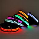 رخيصةأون أطواق ومقاود الكلاب-قط كلب ياقة أضواء LED قابل للسحبقابل للتعديل لون سادة نايلون أخضر أزرق زهري