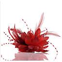 ieftine Bijuterii de Păr-Șifon / Imitație de Perle / Dantelă Palarioare / Flori / Veșminte de cap cu Floral 1 buc Nuntă / Ocazie specială / Casual Diadema