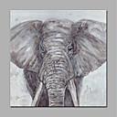 رخيصةأون ملصقات ديكور-هانغ رسمت النفط الطلاء رسمت باليد - حيوانات الحديث بدون إطار داخلي / توالت قماش
