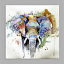 povoljno Bojano-Hang oslikana uljanim bojama Ručno oslikana - Pop art Moderna Bez unutrašnje Frame / Valjani platno