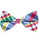 رخيصةأون ربطات العقدة-ببيونة مخطط / ألوان متناوبة رجالي - شريطة حفلة / أساسي