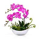 رخيصةأون أزهار اصطناعية-زهور اصطناعية 2 فرع كلاسيكي الحديث المعاصر فالاينوبسيس