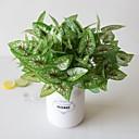 رخيصةأون أزهار اصطناعية-1 قطعة بسيطة الإبداعية محاكاة نبات بوعاء الهندسة ورقة خضراء ورقة خضراء 7 شوكة أحمر نقطة بيضاء نقطة الجنية حديقة مكتب غرفة المعيشة دراسة الديكور النباتات الخضراء