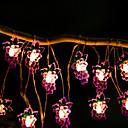 povoljno LED svjetla u traci-2m svjetiljke od voća od grožđa 20 leda toplo bijelo kućno ukrasno 5v 1set