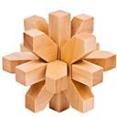 ieftine Cuburi Magice-Puzzle Lemn / Jocuri IQ nivel profesional / Viteză De lemn Clasic & Fără Vârstă Băieți Cadou