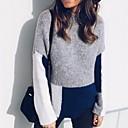 povoljno iPhone maske-Žene Color block Dugih rukava Pullover Džemper od džempera Bež / Sive boje S / M / L