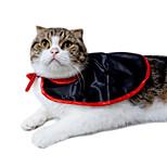 Кошка Костюмы Одежда для собак Хэллоуин Сплошной цвет Черный