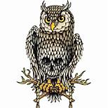 Временные тату Тату со стразами Тату с животными Тату с цветами Тату с тотемом Прочее Олимпийская серия мультфильм серии Романтическая