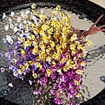 Недорогие -1 Филиал Пластик слива Букеты на стол Искусственные Цветы
