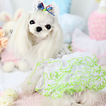 Dog Dress Dog Clothes Casual/Daily Princess White