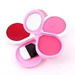 3 Concealer/Contour Blush Matte Mineral Powder Long Lasting Concealer Face China