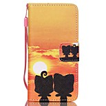 Case For Apple Ipod Touch5 / 6 Case Cover Card Holder Wallet with Stand Flip Pattern Full Body Case  Ali Hard PU Leather