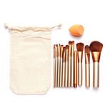 12pcs Makeup Brush Set with 1pc Powder Puff with Cosmetic Bag Foundation/Concealer/Blush/Shadow/Eyeliner/Lip/Brow/Makeup Tools for Face Makeup