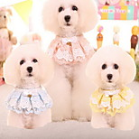 Cat Dog Tie/Bow Tie Dog Clothes Casual/Daily Lace Blushing Pink Blue Yellow