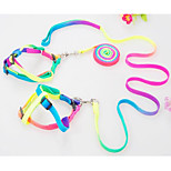 Dog Harness Leash Trainer Portable Foldable Adjustable Flexible Rainbow Nylon Rainbow