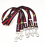 Dog Leash Walking Color Block Nylon