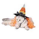 Cat Dog Hats, Caps & Bandanas Dog Clothes Acrylic Fibres Winter Spring/Fall Halloween Sequins Orange Costume For Pets