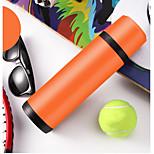 Office/Career Sport Drinkware, 500 Stainless Steel Water Vacuum Cup
