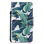 Case For Apple Ipod Touch5 / 6 Case Cover Card Holder Wallet with Stand Flip Pattern Full Body Case  Banana Tree Hard PU Leather