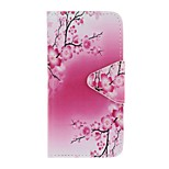 Case For Apple Ipod Touch5 / 6 Case Cover Card Holder Wallet with Stand Flip Pattern Full Body Case  Plum Blossom Hard PU Leather