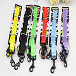 Dog Leash Walking Solid Nylon Rainbow