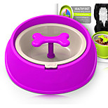 Dog Feeders Pet Bowls & Feeding Blue Green Red Yellow Purple
