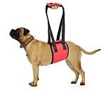 Недорогие -Собака Ремни Безопасность Однотонный Черный Красный Синий