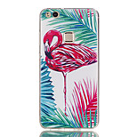 cheap -Case For Huawei P8 Lite (2017) P10 Lite Ultra-thin Pattern Back Cover Flamingo Soft TPU for P10 Lite P10 P9 Lite P8 Lite P8 Lite (2017)