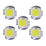 Недорогие -70w cob 5600lm 3000-3200k / 6000-6200k теплый белый / белый светодиодный чип dc30-36v 5шт.