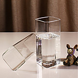 cheap -Drinkware Glasses Tea Cup / Glass Boyfriend Gift / Girlfriend Gift 2pcs