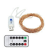 cheap -10m String Lights 100 LEDs 1 13Keys Remote Controller Warm White / Cold White USB / Decorative USB Powered 1set