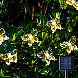 abordables -guirlande lumineuse à led solaire 6.5m 30leds papillon extérieur waterpoof blanc chaud blanc coloré 8 mode extérieur étanche fée lumière mariage patio maison de jardin lampe de décoration de vacances