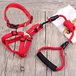 economico -Prodotti per cani Set di guinzagli per imbracatura Portatile Retrattile Nylon Nero Giallo Rosso Blu 3 pezzi