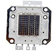 abordables -super lumineux haute puissance led puce 30w smd cob lumière rgb couleur changeant pour émetteur composants diode 50 w ampoule perles bricolage éclairage (rgb)