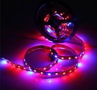 abordables -Zdm 5m Bande lumineuse LED Ruban LED étanche ip65 5050 4 rouge + 1 bleu spectre complet conduit élèvent la lumière 300leds led lampes de bande pour les plantes grandissant aquarium éclairage 1pc