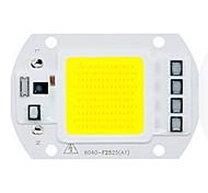 abordables -1pc 50w utral lumineux led puce cob 110v 220v entrée smart ic pour diy led lumière d'inondation chaud blanc froid