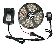 economico -5m 300 LED 5050 SMD 10mm Bianco caldo Bianco Strisce LED Tiktok 12 V / IP44