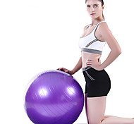 abordables -55 cm Balle d'Exercice Ballon de fitness / balle de yoga Antidéflagrant PVC Soutien Avec pour Yoga Entraînement Equilibre