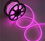 abordables -2m bandes lumineuses LED Ruban LED Flexibles 240 LED 2835 SMD 10mm Blanc Chaud Blanc Rouge Imperméable Découpable Connectible 220 V  IP68