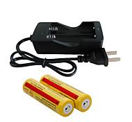 abordables -Chargeur de batterie batterie 4200 mAh pour 18650 Rechargeable Portable Charge Rapide Royaume-Uni EU Etats-Unis Camping / Randonnée