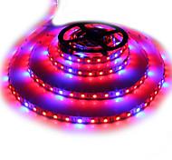 abordables -zdm 5m Bande lumineuse LED Ruban LED étanche 5050 4 rouge + 1 bleu spectre complet conduit élèvent la lumière 300leds lampes de bande à led pour les plantes en croissance non étanche aquarium éclairag