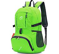 abordables -20 L Sac à dos de randonnée Sac à dos léger et compressible Etanche Poids Léger Séchage rapide Ultra léger (UL) Extérieur Randonnée Camping Sports d'équipe Nylon Vert Bleu Violet / Compact