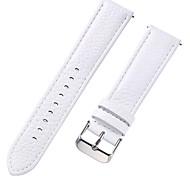 economico -vera pelle / Pelle / Pelo di vitello Cinturino per orologio  Bianco 17 cm / 6,69 pollici / 18 cm / 7 pollici / 19 cm / 7,48 pollici 1 cm / 0,39 pollici / 1,2 cm / 0,47 pollici / 1,3 cm / 0,5 pollici