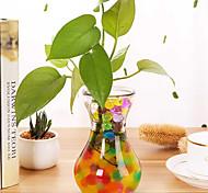 abordables -3000 pc / sac en forme de perle hydrogel cristal sol eau perles bio gel boue grandir magie gelée boules orbiz pour fleur mariage décor à la maison
