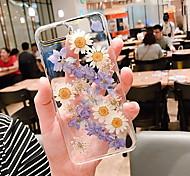 economico -telefono Custodia Per Apple Per retro Silicone iPhone 12 Pro Max 11 SE 2020 X XR XS Max 8 7 6 Transparente Fantasia / disegno Transparente Floreale Morbido Silicone